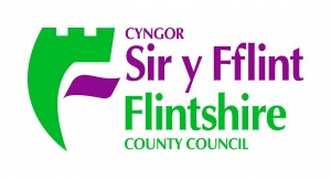Flintshire CC logo small