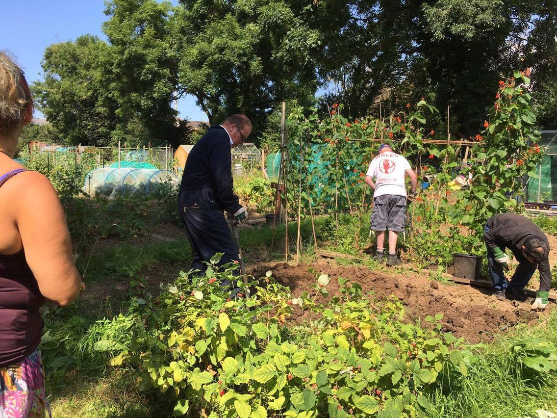 Wellbeing at allotment planting